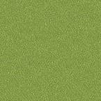 Gaja Paris Green Fabric